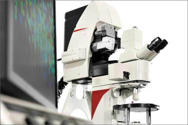 Špičkový mikroskop v Krči přispěje k výzkumu epilepsie