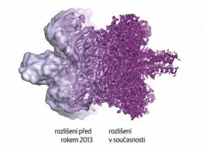 """Ukázka toho, jak se vyvinula naše schopnost pozorovat objekty v molekulách během posledních několika let. Místo """"blobů"""" s nezřetelnými obrysy je dnes možné poměrně přesně určit strukturu molekul – a díky tomu tedy také zjistit, proč a jak vlastně fungují."""