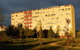 Heyrovského ústav