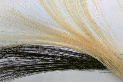 Když se vlasy barví příliš často, tak je to může nenapravitelně poškodit