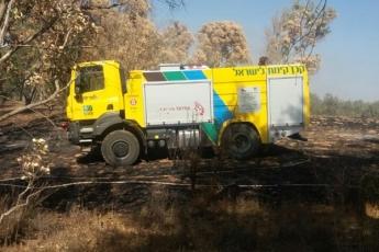 Naposledy se hasičský vůz TATRA podílel na hašení lesního požáru v přírodní rezervaci nedaleko Gazy na jihu Izraele