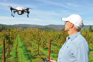 Firma Vine-View využívá drony nad vinicemi v kombinaci s multifunkční nebo infračervenou kamerou, doplněnou podle potřeby i jinýmI senzory
