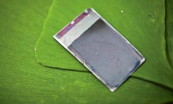 """""""Umělý list"""" Franka Nocery z amerického MIT. Tato generace technologie ovšem musela být poměrně výrazně upravena, aby umožnila zkoušky s GMO bakteriemi, které by vznikající vodík mohly využít k výrobě dalších látek. Bakteriím totiž škodil vznikající reaktivní kyslík"""