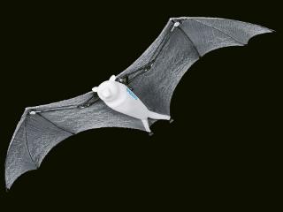 Navzdory velkému rozpětí křídel (228 cm) a celkové délce 87 cm BionicFlyingFox váží pouhých 580 g