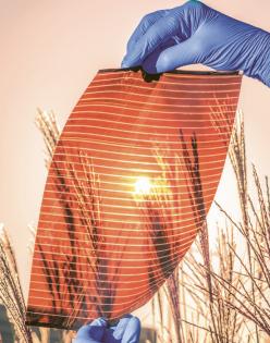 Průhledný perovskitový článek od polské firmy Saule Technologies, který byl představen na začátku roku 2019. Jde zřejmě o první ukázku využití perovskitové technologie v tzv. integrovaných článcích, které se mají instalovat přímo na budovy /Foto: Saule Technologies/