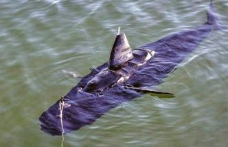 ghostswimmer amerického námořnictva plave jako skutečná ryba