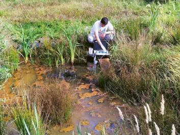 Odběr vzorku pórové vody ze sedimentu mokřadu B (1)