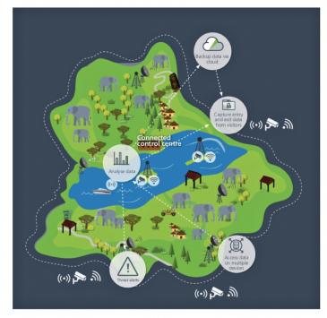 Cisco pomáhá Národnímu parku Kefue úspěšně bojovat s pytláky