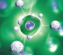 Stříbrné ionty Ag+ prorážejí buněčnou stěnu organismů, narušují činnost jejich nitrobuněčných enzymů a tím, že napadá DNA organismu, zastavují buněčnou replikaci