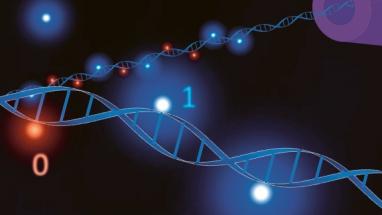 Biologické molekuly DNA mají ohromný potenciál pro ukládání informace