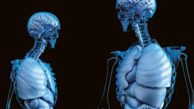 Populace stárne a léčbu kostí potřebuje čím dál více lidí