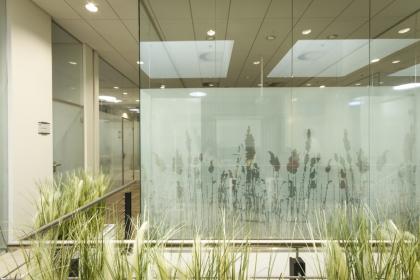 Světlovody v komerčních prostorech