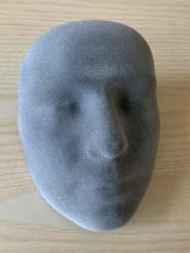 Model průměrného obličeje z 3D tisku
