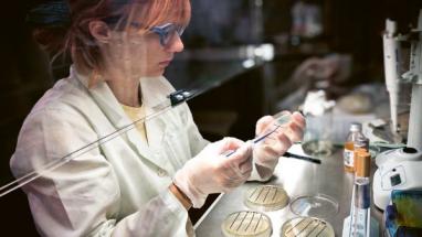 Test antibakteriální úpravy textilie