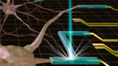 Přesný 3D tisk je nezbytný pro smysluplné tkáňové inženýrství i pro řadu dalších biologických a medicínských aplikací
