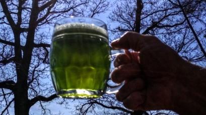 Velikonoční pivní speciály ani letos většina pivovarů nevynechá